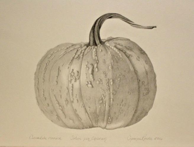 pumpkincompositionfinal
