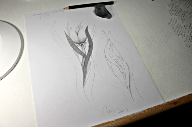 simplelinedrawings3